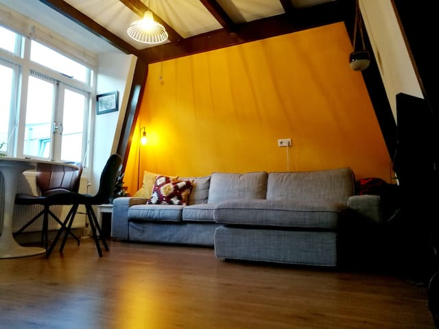 Cosy apartment in city centre of Utrecht