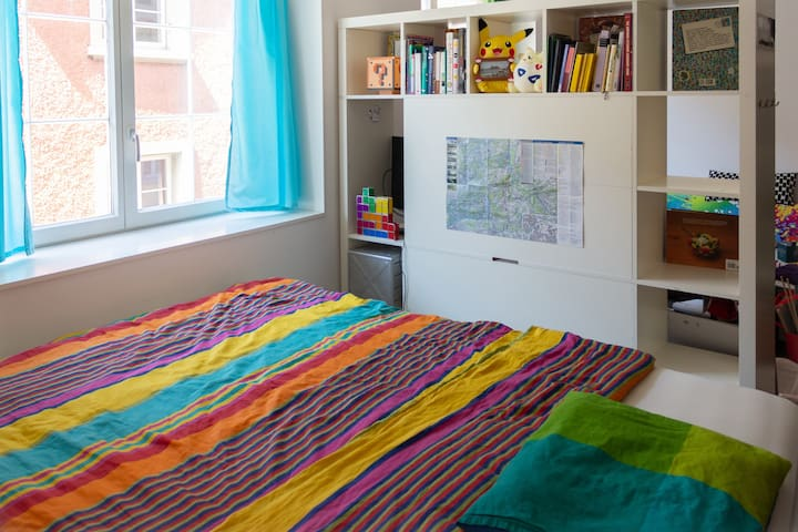 Guest room in modern old town flat