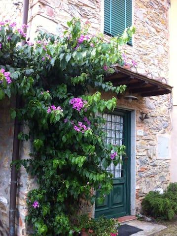 La Casina di Giuliano on the hills of Versilia