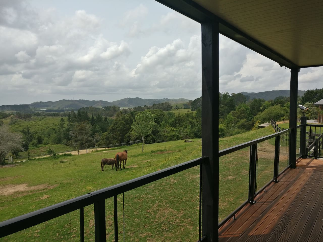 Imagine breakfast/dinner on the deck, rural views with friendly animals.