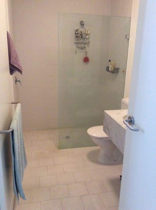 Clean and simple bathroom.  Excellent shower.
