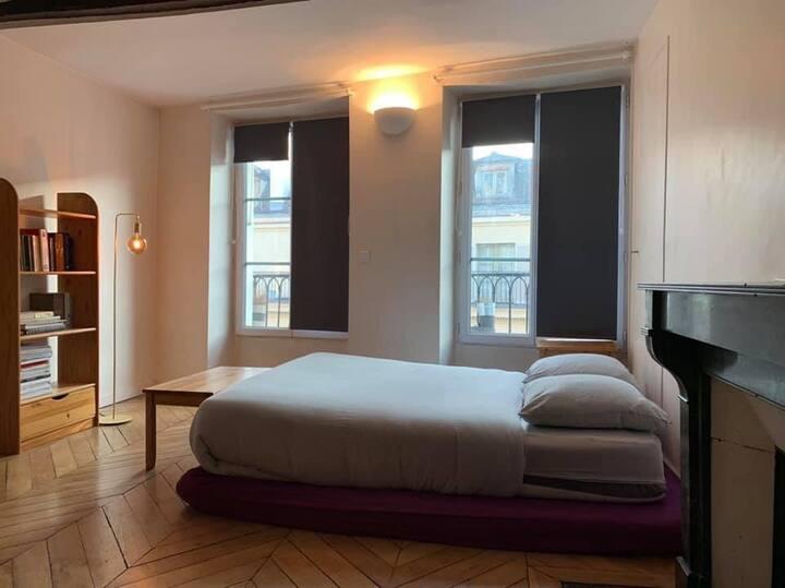 Cozy studio in the center of Paris ,
