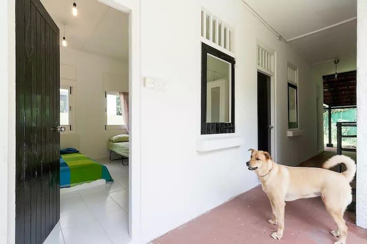 Greentree Cottage near Sembawang Beach (Large Rm) - Singapur - Casa