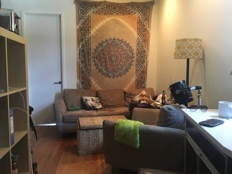 Private Room in a chill home 20 mins to Manhattan