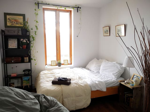 Green, Charming &Cozy Room in Mont-Royal Plateau