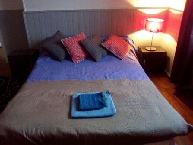 Chambre cosy, très bien situé - Grenoble - Apartament