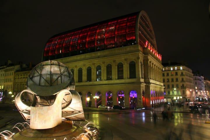 Appart en plein centre ville (hôtel de ville) - Lió