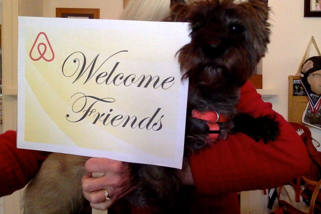 Our sweet Cairn Terrier, Lincoln looks forward to greeting you.