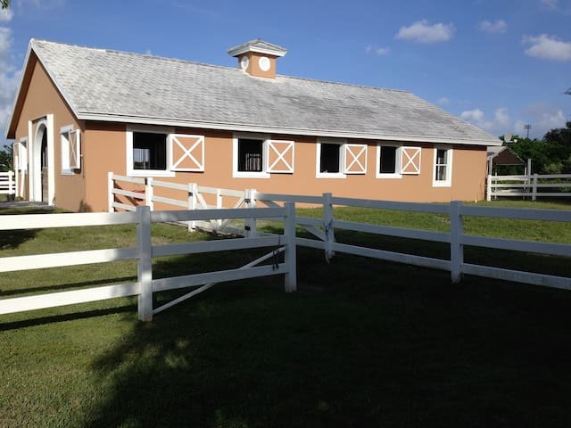 Equestrian Accommodations