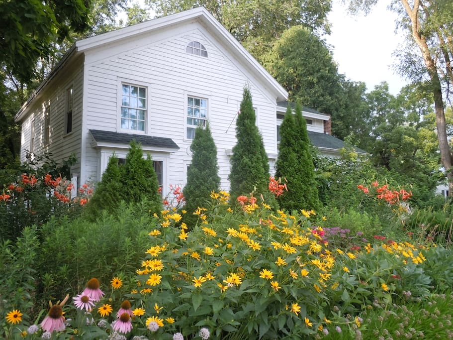 Cottage gardens in full Bloom in July.