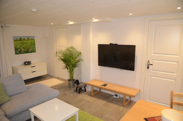 Apartment 55m2 close to the City, Globen and Tele2