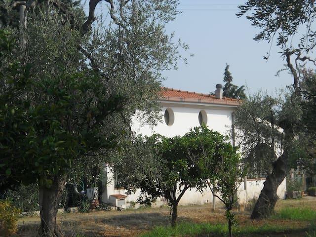 villa sara - Pisticci - Villa