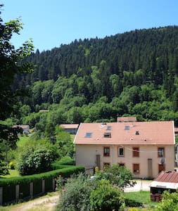 Spacious flat in moutains, close from everything - Plainfaing