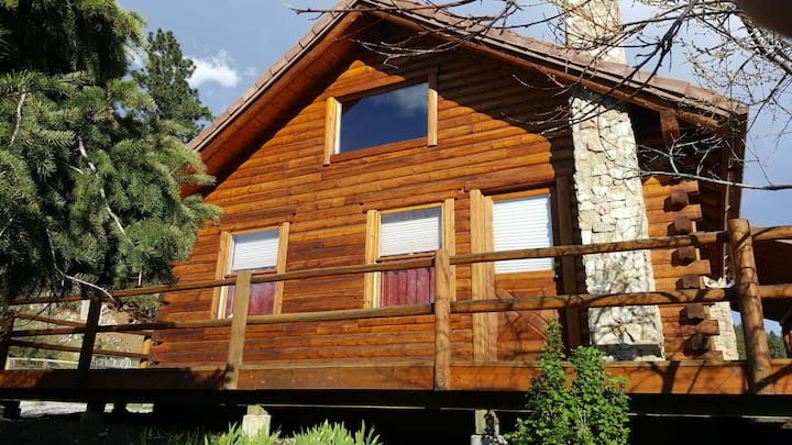 Pond side cabin: see wildlife, relax and explore