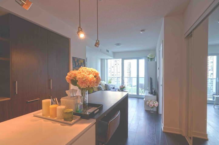 1 Bdrm Luxury Condo Harbourfront - Path Connection