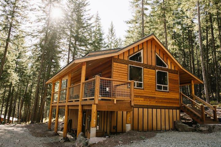 Gorgeous cabin near Mazama/Winthrop