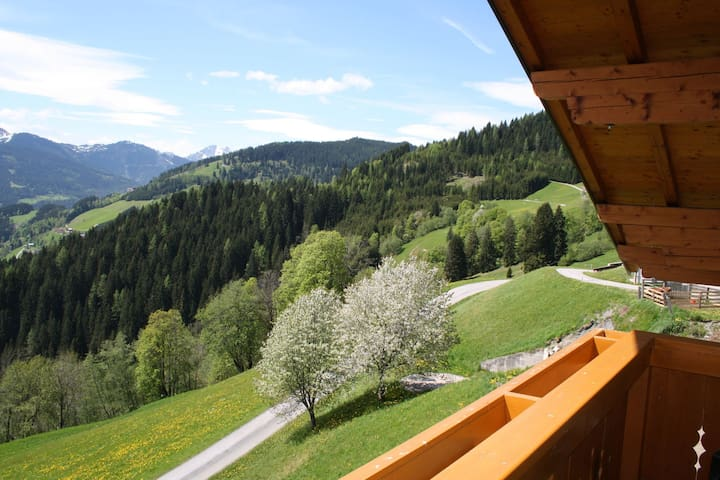 Beautiful Holiday Home in Wagrain with Garden