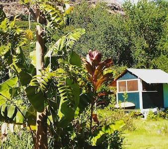 The Coconut grove: Cabin A - 威美亚(Waimea) - 小木屋
