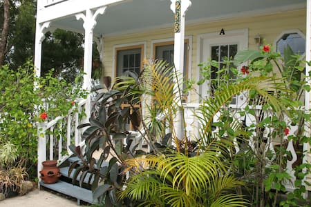 PALM BREEZE-THE TROPICS IN THE HISTORIC DISTRICT