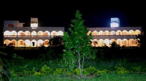 Ashok Tree at Yogiville