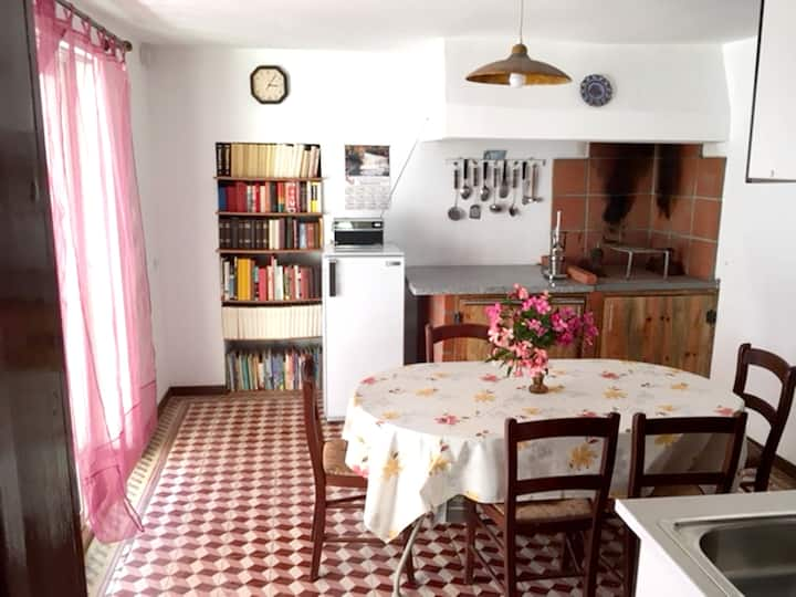 House with 3 bedrooms in Mira, with WiFi - 5 km from the beach