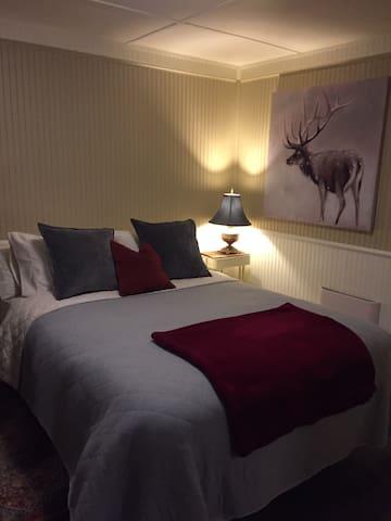 Bedroom Area with Queen Bed