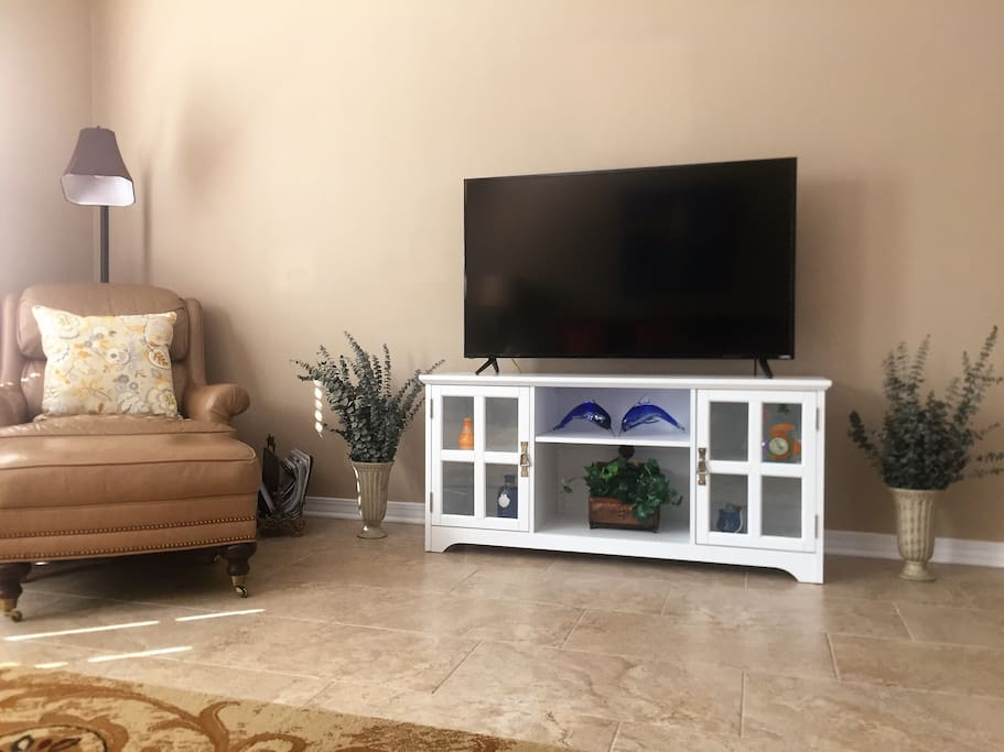 FLAT SCREEN SMART T.V. IN THE LIVING AREA