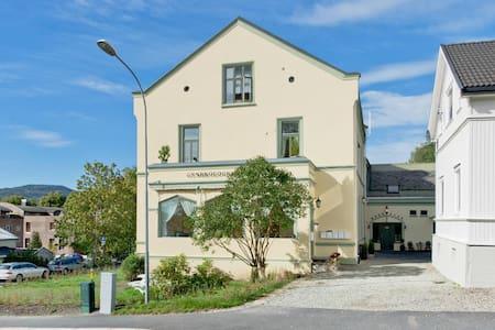Koselig leilighet i Drammen sentrum - 德拉門(Drammen) - 公寓