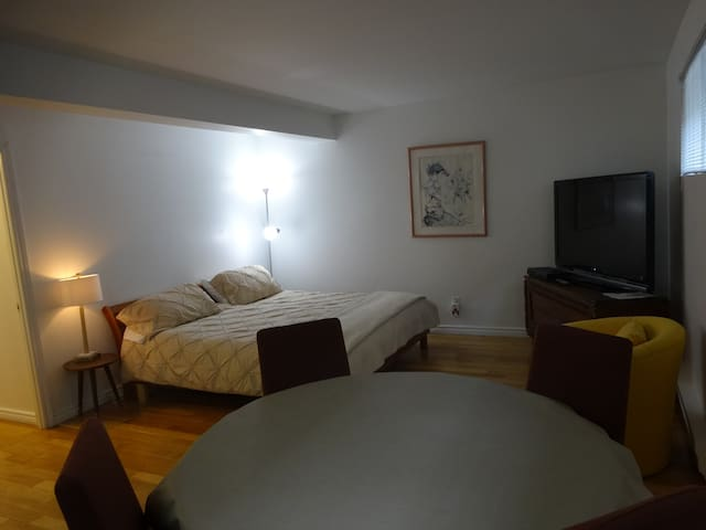 A large, clean & confortable studio - Côte Saint-Luc - House