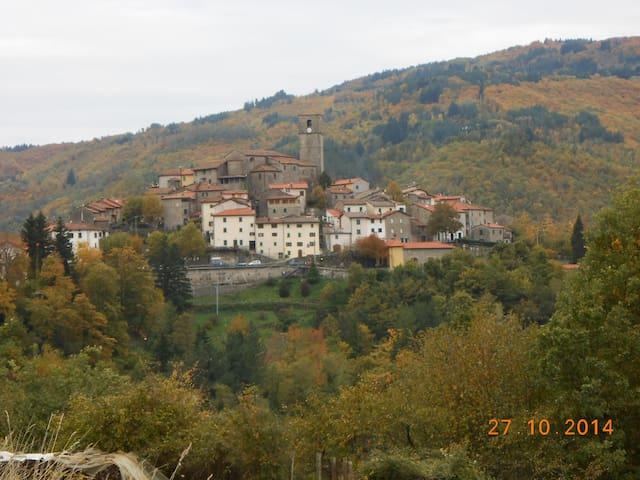 antica casa del 600 - Piteglio - House