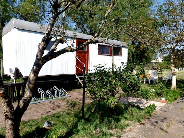 Ostseeurlaub im Wagen - Dierhagen