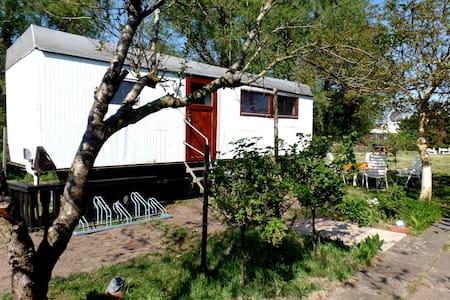 Ostseeurlaub im Wagen - Dierhagen - Andre