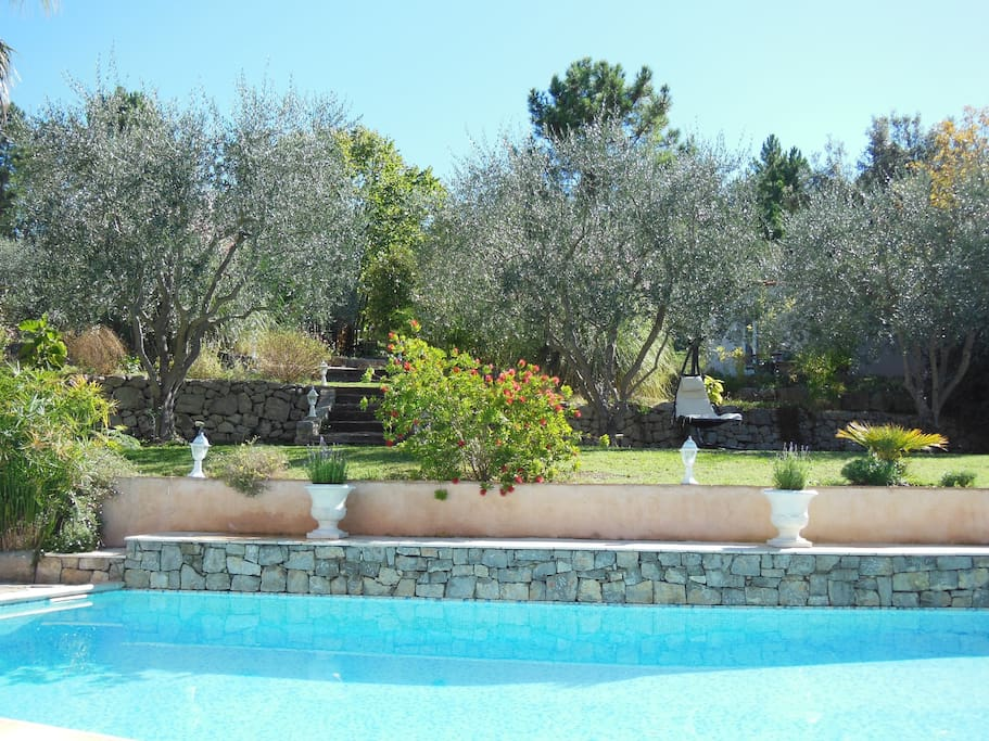 B B In French Riviera Swimming Pool In Laws For Rent In Le Tignet Provence Alpes C Te D 39 Azur