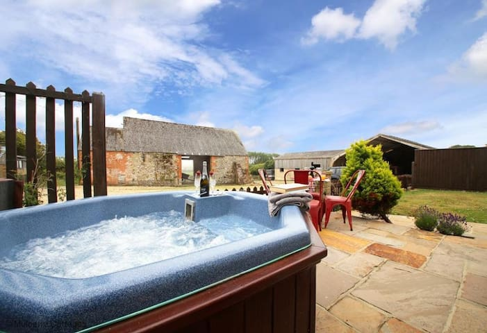 Jobsons Dairy Sleeps4, a converted milking parlour, originally part of the adjacent thatched 17th century farmhouse.