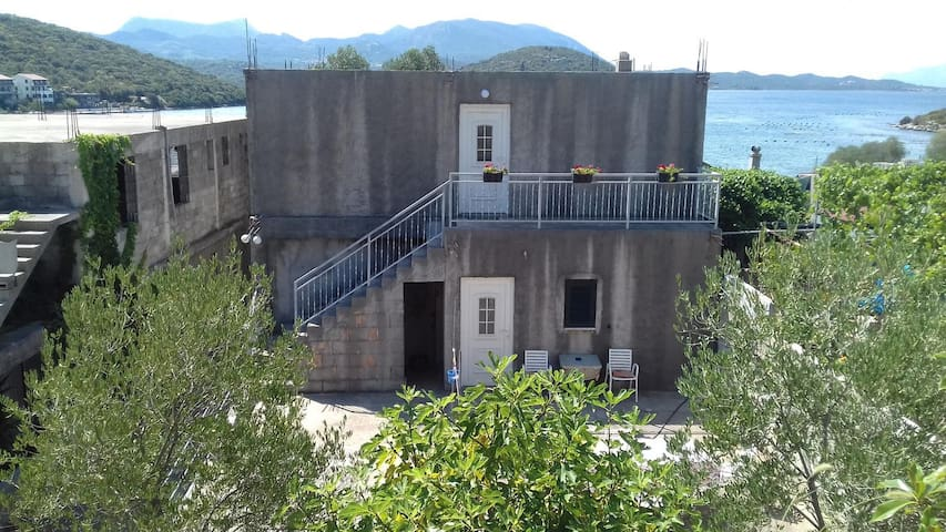 Garçonnière avec la terrasse Luka Dubrava (Peljesac) (AS-14040-a)