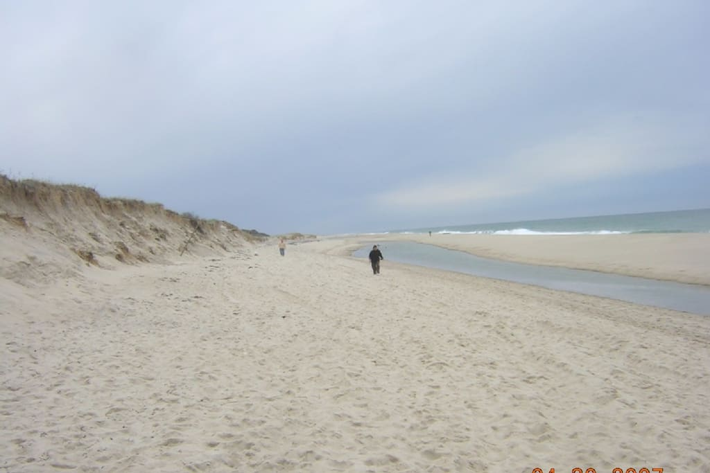 Nauset Beach, a short walk down Beach Road