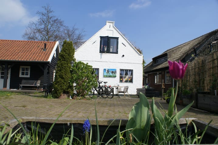 Typical Dutch Home