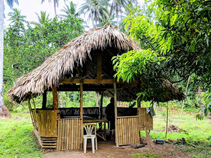 Native hut with hammock and half-board meals