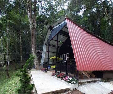 Cabañas de Don Sec, vive y disfruta la naturaleza