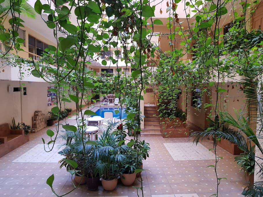 El area comun tiene su piscina con asoleadero,baños y area para poder tomarte unas ricas bebidas refrescantes para nuestro hermoso clima que lo amerita.