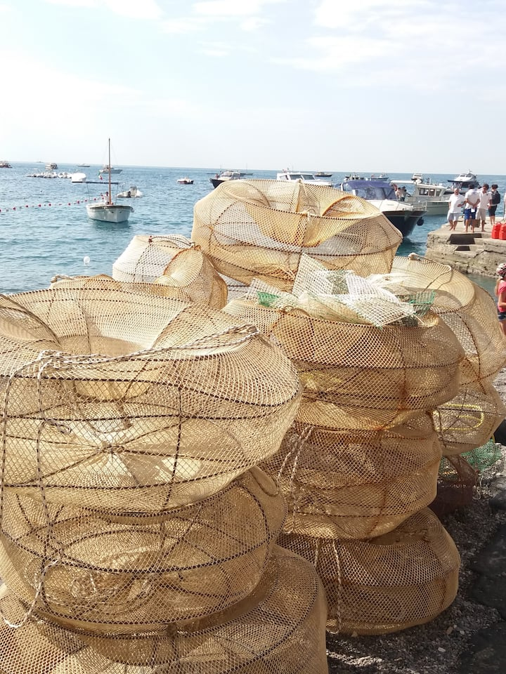 fishermans local nets
