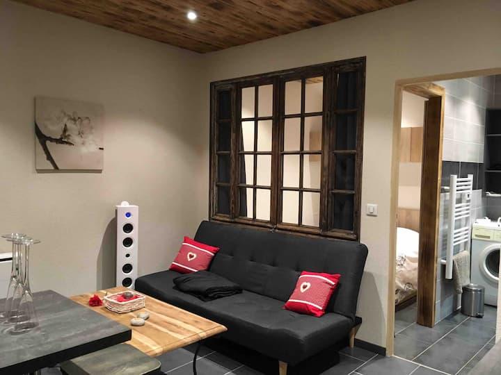 Charmant studio fonctionnel avec petite chambre