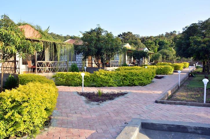 THE MOUNTAIN VILLA - Room1 - Gujarat - Natuur/eco-lodge