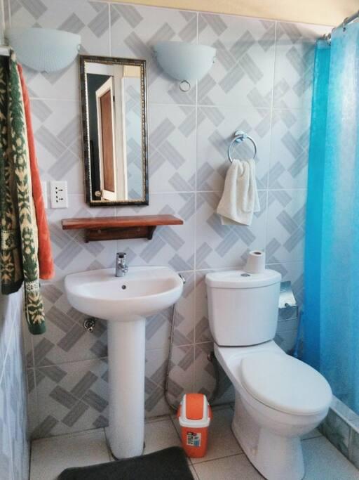 El baño posee excelentes condiciones y mucha limpieza.