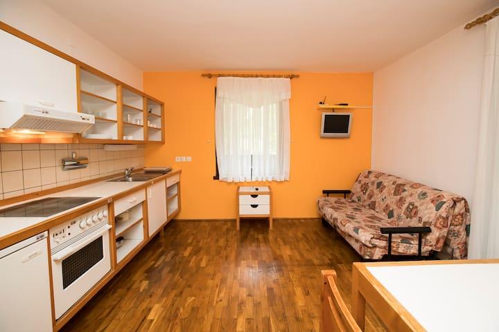 Apartment KOMARCA - Ukanc - Apartment