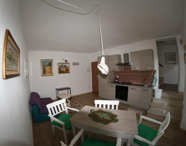 Ampio bilocale in paese - Montescudaio - Apartamento