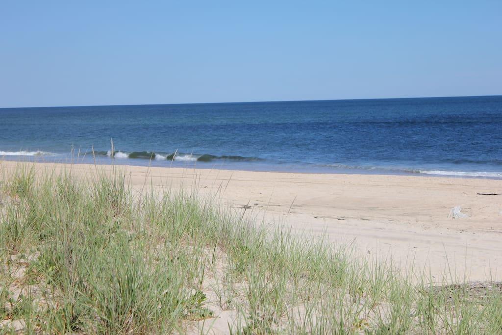Un Crowded Beach