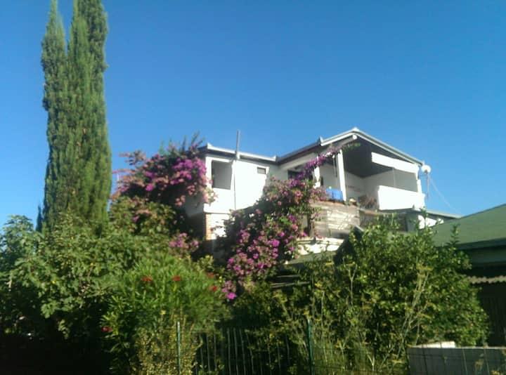 """Villa DUDA"" Velika plaža House- for 14+4 people"