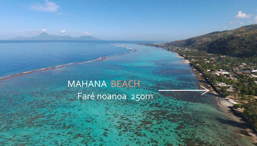 Fare noanoa - Fakarava suite + lagon accessible