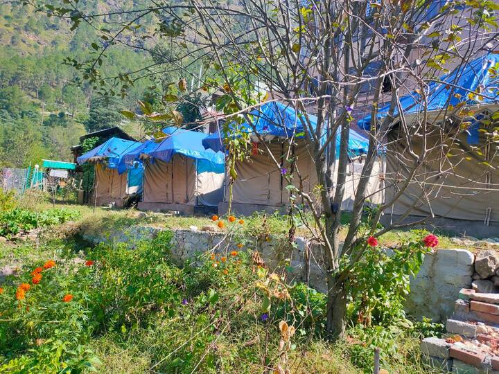 Private camp close to Parvati River Kasol Himachal
